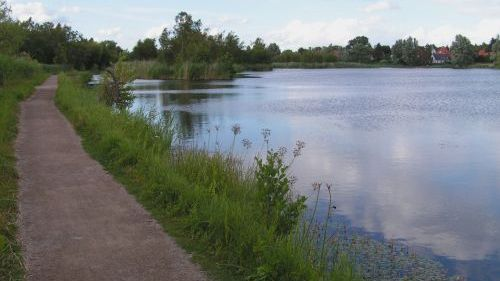 Genofte sø fra stien langs Brobæk Mose. Fotograf: Mogens Holmen